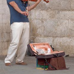 Violist in Siena