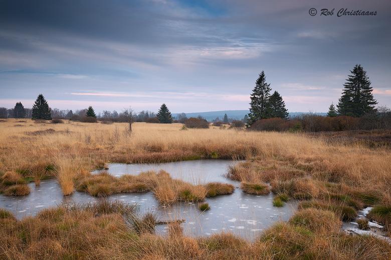 Cold Afternoon - Vorig jaar November weer een bezoekje gebracht aan de Hoge Venen / Hautes Fagnes in België. Deze keer weer in het gebied het Brackven