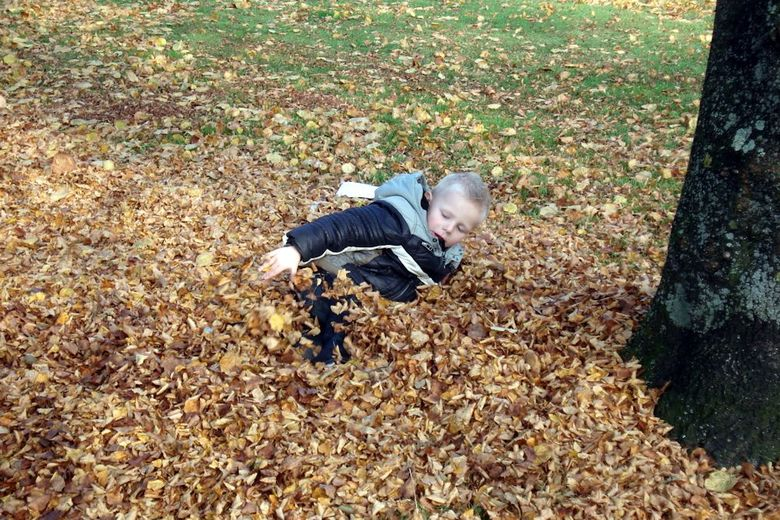 Herfst - Er is niks zo lekker om tussen de bladerente liggen