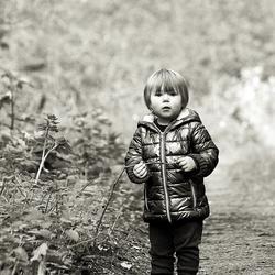 Klein meisje in het bos