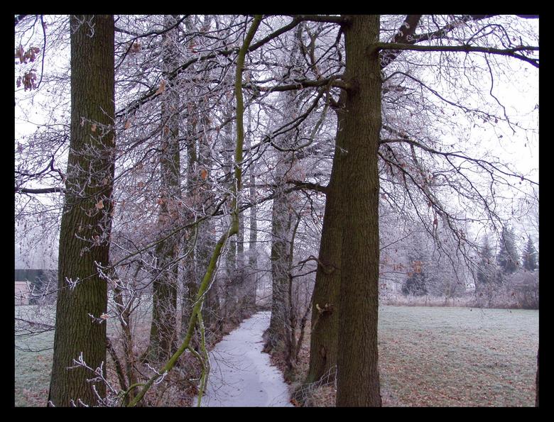 Vriesweer -