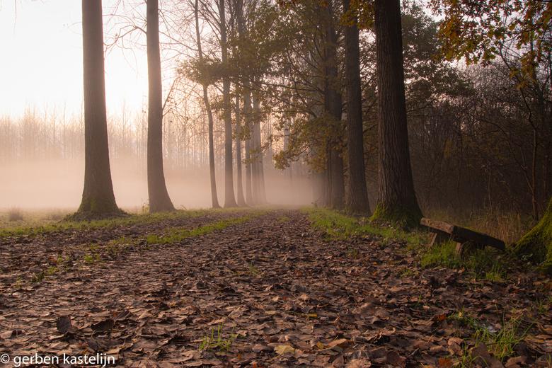 benkske in de mist - een zondag ochtend in de mist