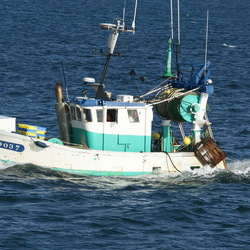 Visserscheepje uit Lorient (Frankrijk)