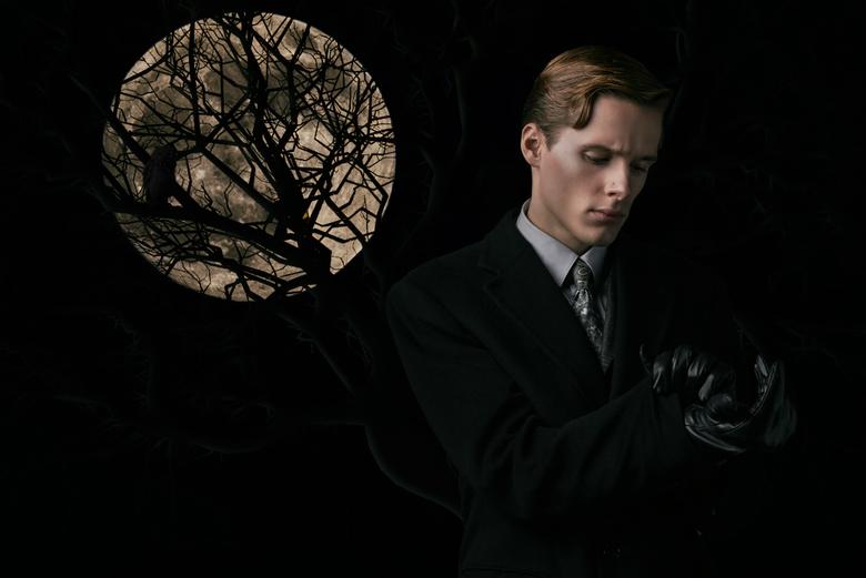 Moonlight scene...  - Foto composite van 4 Foto's (Super maan, model, boom, uil).