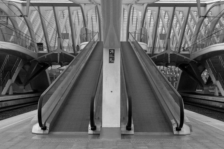 Symetrie in  zwart wit - Gare Guillemins in zwart wit.<br /> <br /> De meeste foto&#039;s die gemaakt worden van gare Guillemins zijn in kleur. Ik h