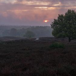 Mistige zonsopkomst op de Posbank