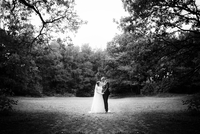 in het bos... - Gewoon een reportage plaatje in het bos.<br /> Ik hou zo van het licht!