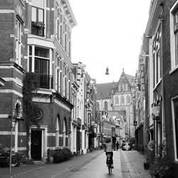 Leuk steegje in Haarlem