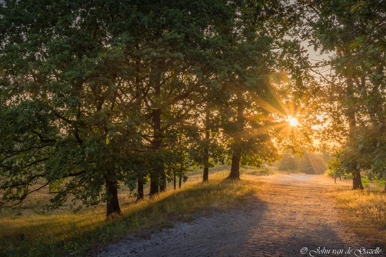 Brunssummerheide zonsopkomst zonnestralen - Zonsopkomst in de Brunssummerheide.<br /> <br /> Efix: ISO 100, 17mm, f/11, 1/100 sec.<br /> <br /> Be