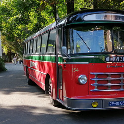 DAM bus