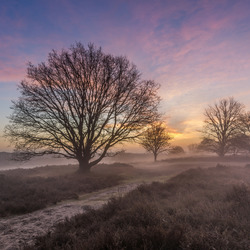 Misty sunrise Posbank