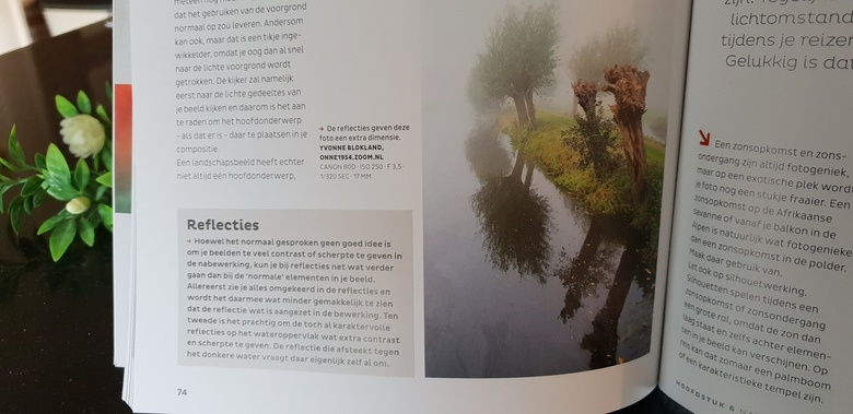 publicatie - zo leuk, mijn foto is opgenomen in een ZOOM PRAKTIJKREEKS boek , t w Natuurlijk licht. Best wel leuk......