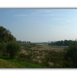 Wetland verdroogd