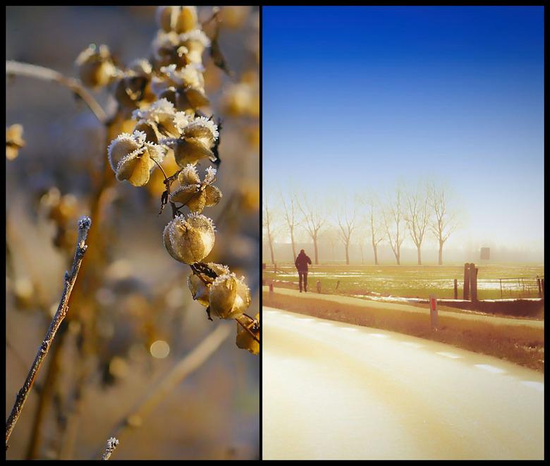 """mijn wintersfeerbijdrage............. - ik doe ook maar even mee met de winterrage op zoom.....<img  src=""""/images/smileys/wilt.png""""/>"""
