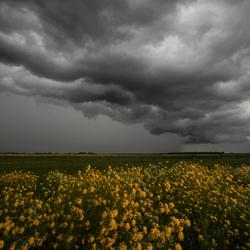 Stormchase in de polder