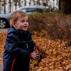 herfts, herfst, wat heb je te koop.. bladeren, bladeren een hele hoop