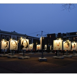 Down's upside paardenmarkt Alkmaar