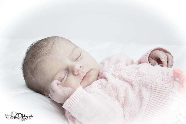 New Born fotografie, High Key -