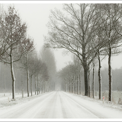 a touch of winter (1)