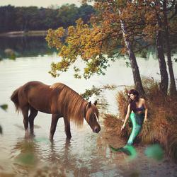 Mermaid with her Seahorse