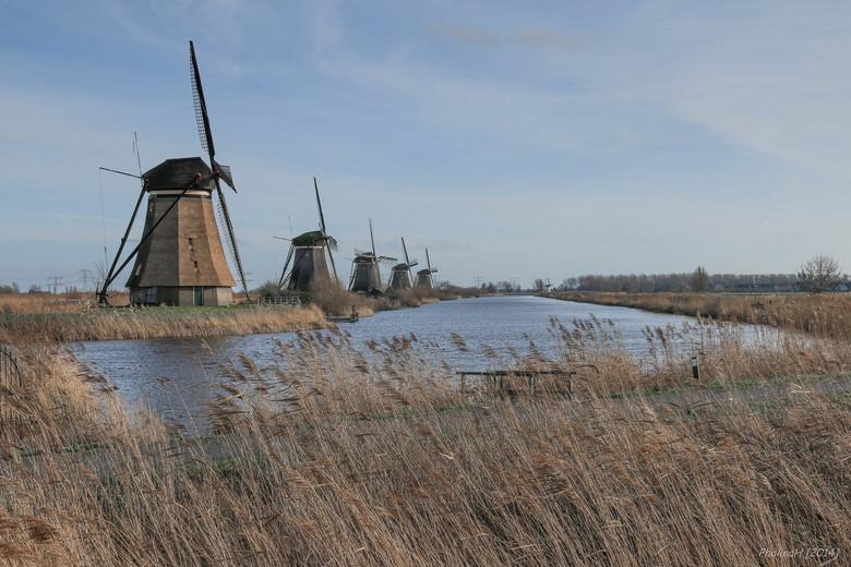 Vijf tegen één (Kinderdijk) - Kinderdijk op Nieuwjaarsdag; vijf molens aan de linkeroever tegenover één witte molen aan de rechteroever.