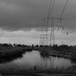 Masten in het landschap