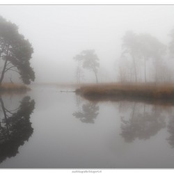 Mist in Hatertse Vennen (3)