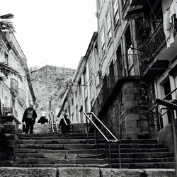 Porto streetlife