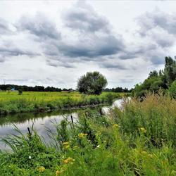 Langs de rivier de Mark......