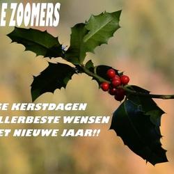 Aan alle Zoomers!!