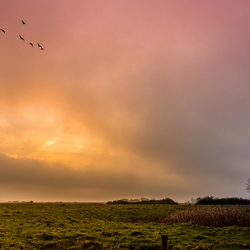 Landschap bij zonsopkomst