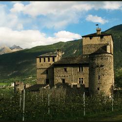 middeleeuws kasteel achter wijngaard