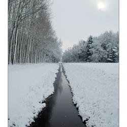 Winterzonnetje