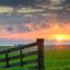 Zonsondergang boven een weiland in mastenbroek