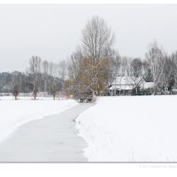 Winterwit 3
