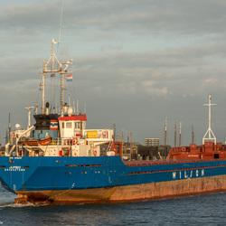 Wilson Jumbo Harlingenhaven