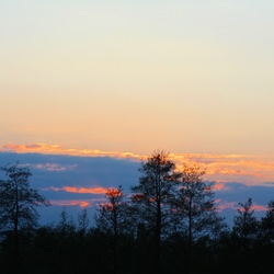 Natuur skyline