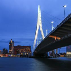 Under the bridge (Erasmusbrug)