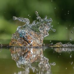Water sculpture (ijsvogel)