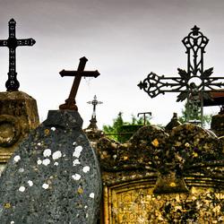 Begraafplaats 5