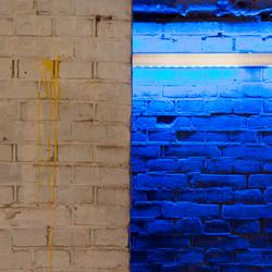 Pampus blauw