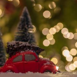 Fijne kerstdagen en een gelukkig en gezond 2019