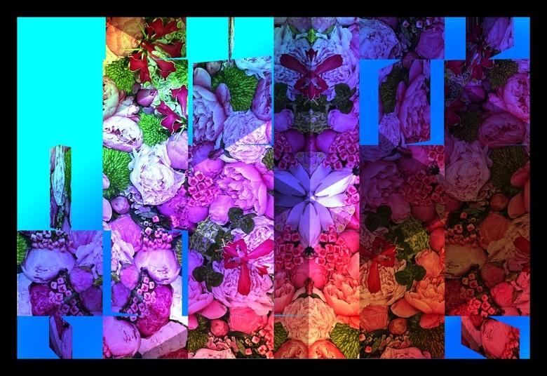 Blessed flowers to Mars in 2025 ... - Bedankt voor de reacties bij de vorige foto&#039;s ...<br /> <br /> bekijk het ruimtelijk ...Blessed flowers t