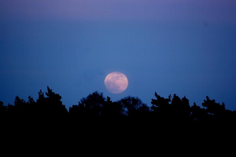 moonlight - fototje van de maan, genomen op de ginkelse heide te Ede.<br /> Ja , er zit een stip in, vond &#039;m toch te mooi om &#039;m niet te upl