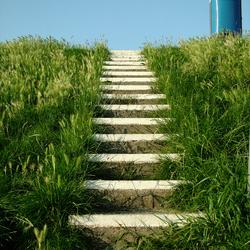 Bewerking: trap