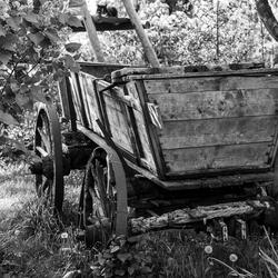 Vroegere formule 1 car in zwart wit