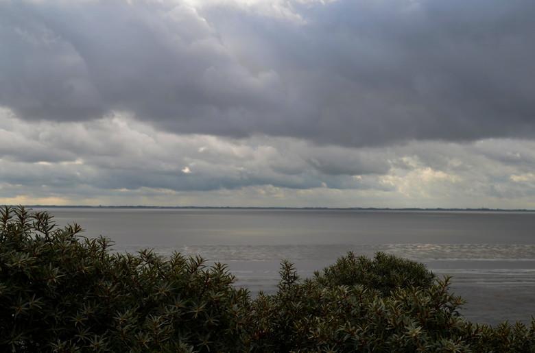 Waddenzee - De Waddenzee vanaf Ameland
