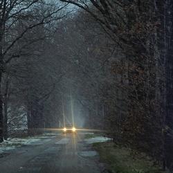 in de sneeuwbui vanochtend