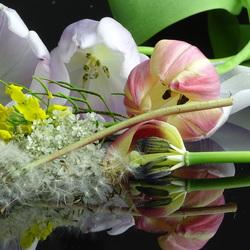 div bloemen