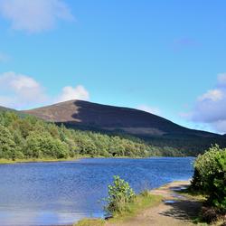 Follow the Loch!